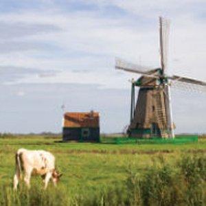 Holandia: ziemny przewód chowany